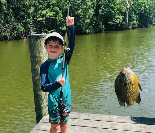 Photo of boy holding a fish on the end of his line
