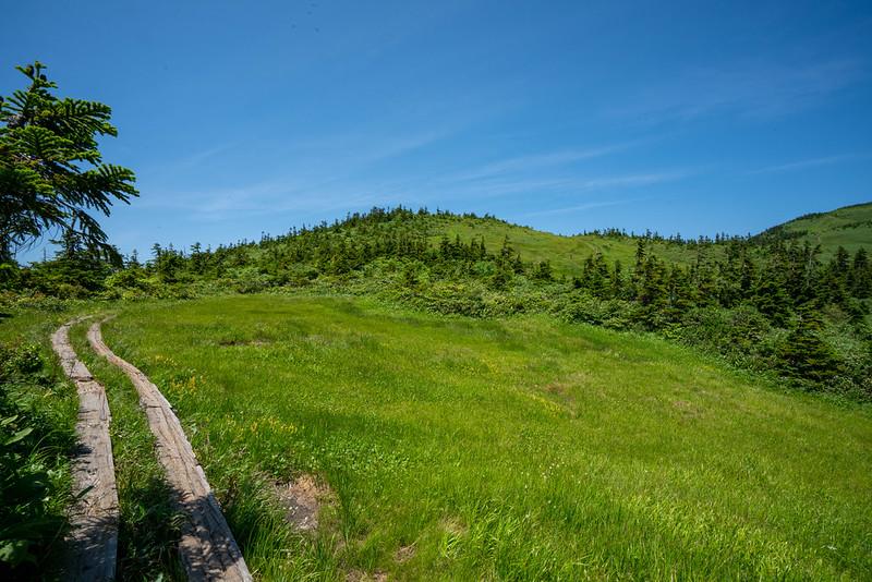 会津駒ヶ岳の登山道