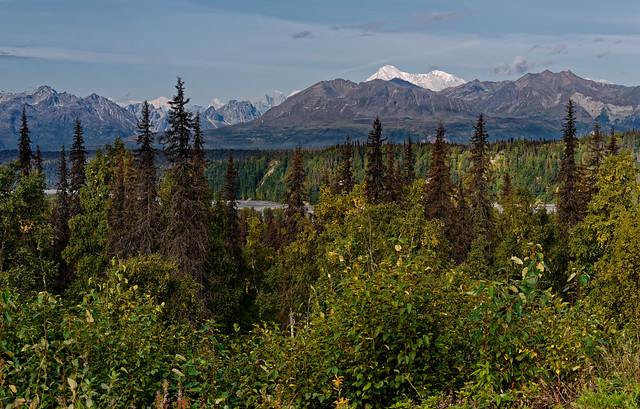 Denali Is That Postcard for Starting a Beautiful Day! (Denali State and National Parks)