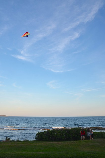 Flying A Kite By The Ocean