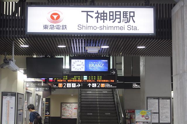 shimoshinmeitenso-gosyuin25