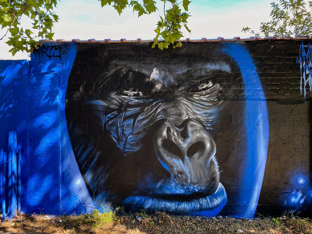 Gorilla by street artist machonenhr