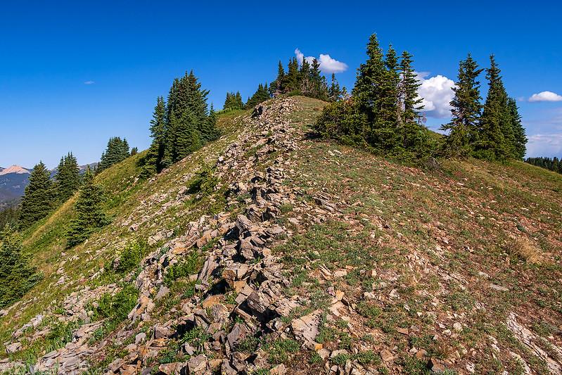 Gentle Ridge