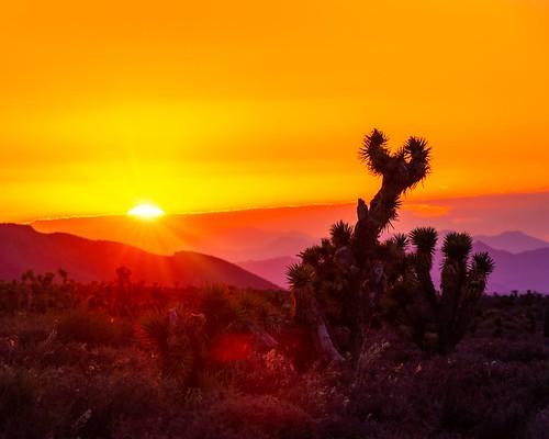 sunsetamazing greatcapture coldcreeknv magical goldenhour