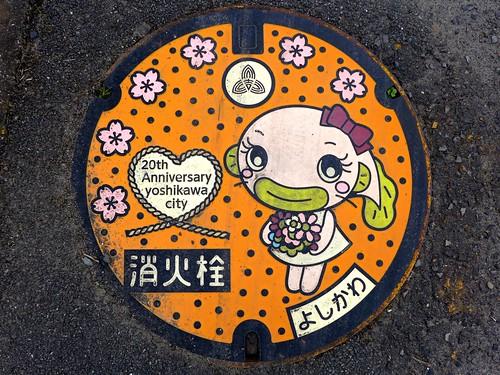Yoshikawa Saitama, manhole cover 6 (埼玉県吉川市のマンホール6)