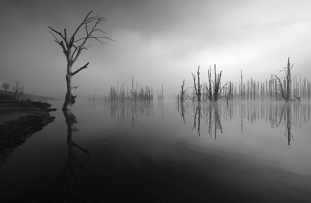 Lake Windamere