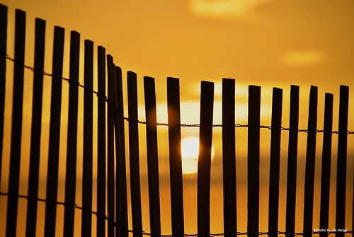 longmayshewave starandstripes rehobothbeach rehoboth delaware de beach sussexcounty morning morninglight goodmorning silhouette silhouettes fence fenceline fencefriday sunlight sun sunrise watchingthesunrise water outdoor ocean atlanticocean delmarva clouds sunglare hff happyfencefriday onlyindelaware visitdelaware