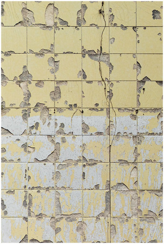 Cracked Tiles on Gable End, Dumbarton | by Gordon_Farquhar