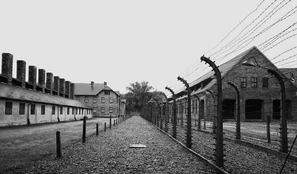 comment-un-ghetto-juif-a-vaincu-une-épidémie-de-typhus