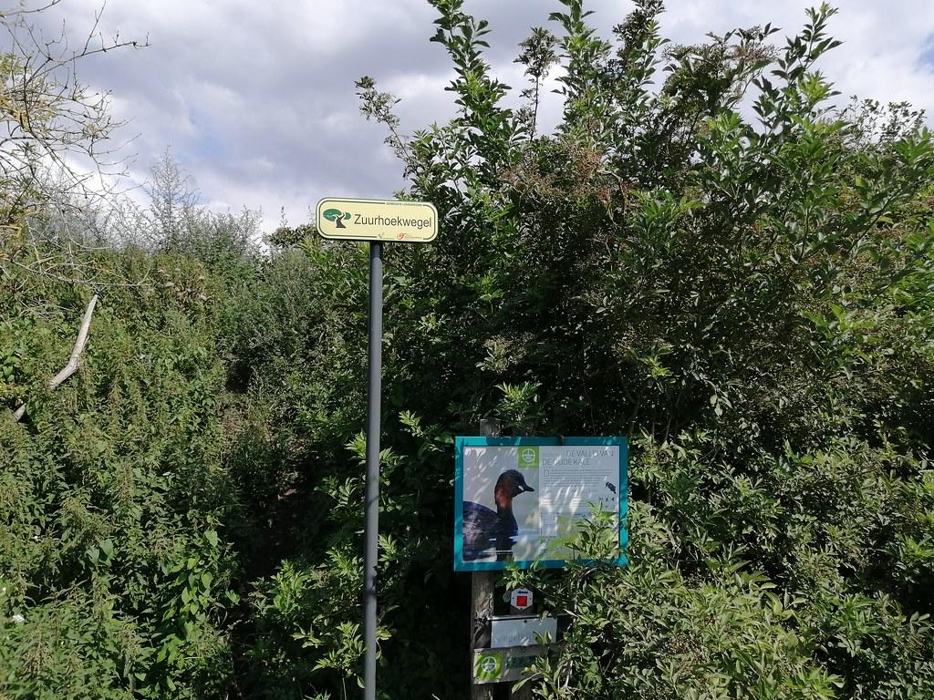 ruta Gante (27)