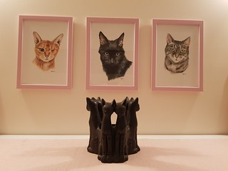 Framed cat portraits on the wall
