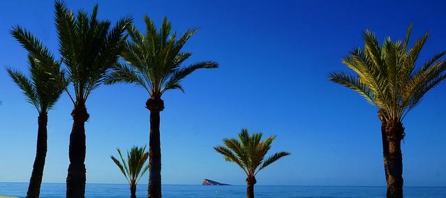 Isla de Benidorm.