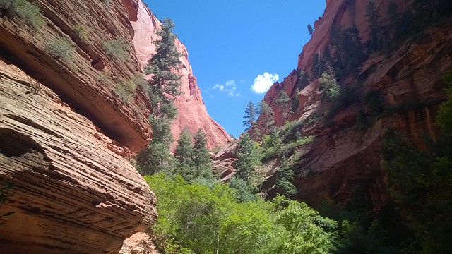 Taylor Creek Trail, Zion National Park  08/24/2015