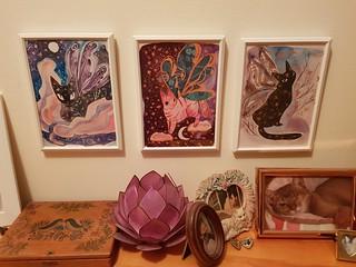 Bunny Dee Luna Moth Cat Prints