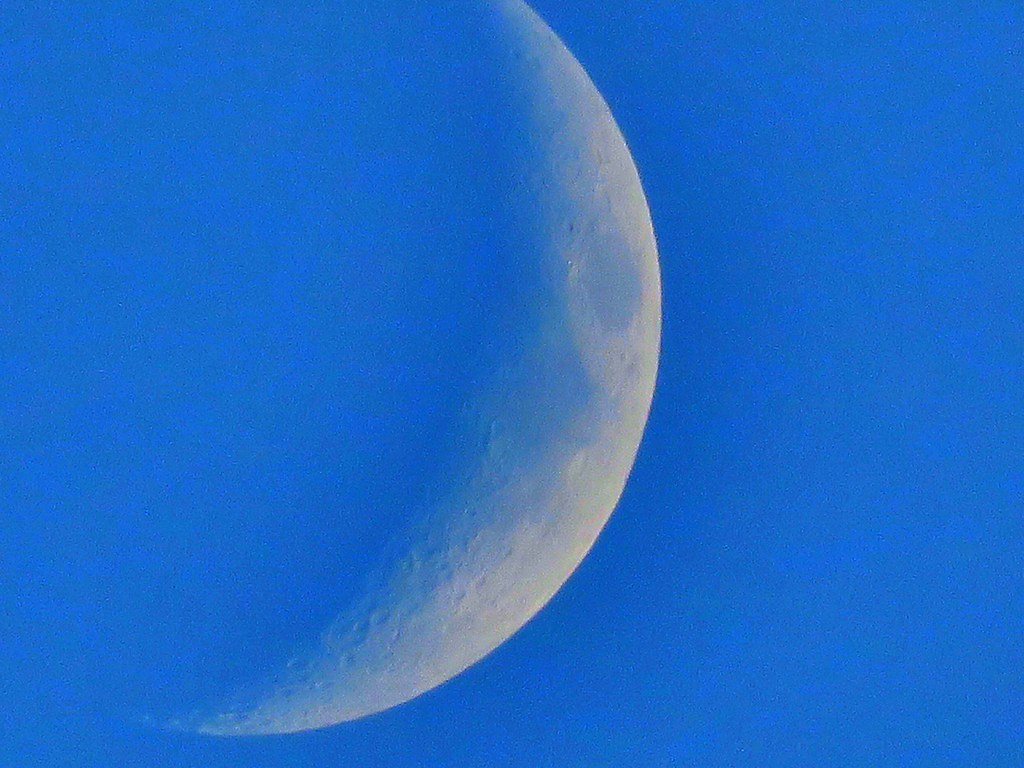 Crescent moon little before dark