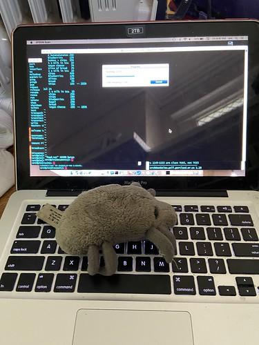 Computer Mite