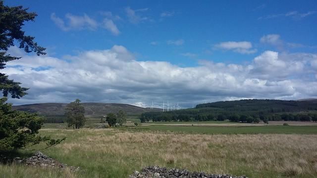 Rural Countryside, near Moy, June 2020