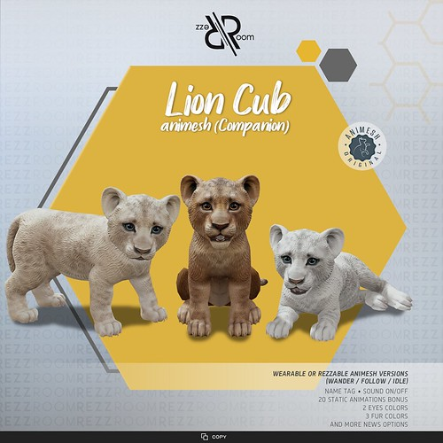 [Rezz Room]  Lion Cub Animesh (Companion)