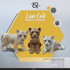 [Rezz Room]  Lion Cub Animesh (Companion)