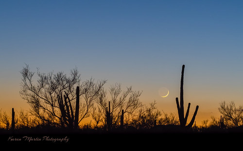 Waxing Crescent Moon