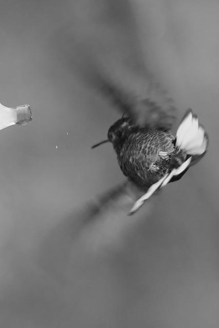 Refueling in flight