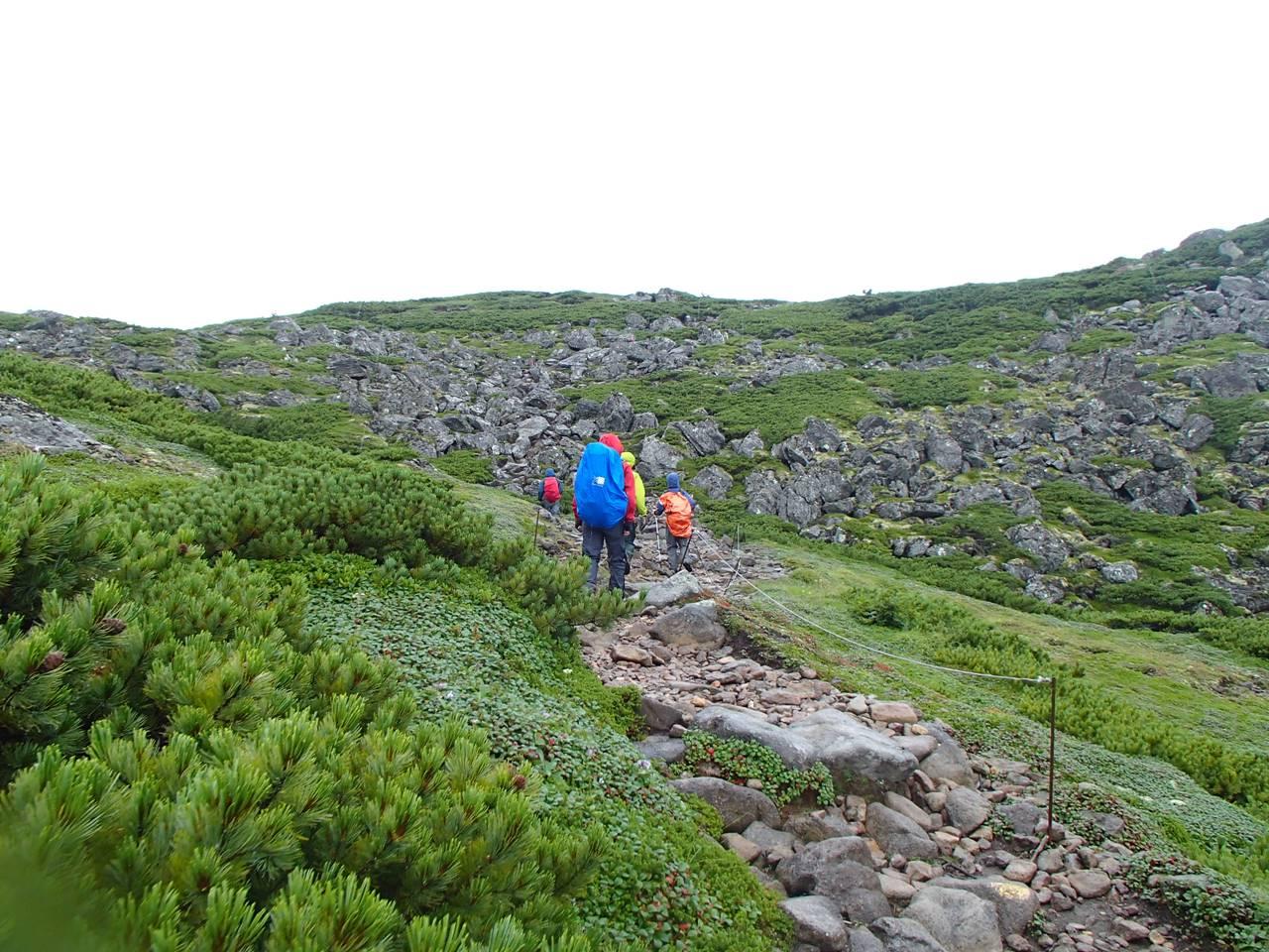 北海道・ニペソツ山登山