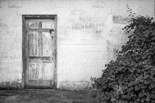 leica monochrom monochrom246 blackwhite blackandwhite monochrome virginia door white wooden wall