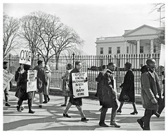 Demonstrators demand release of SNCC leaders: 1962