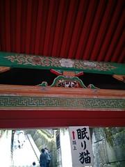 Nemuri-neko, Nikkō, Japan