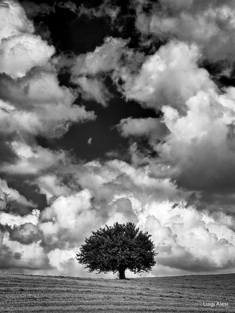 Clouds - Marche countryside