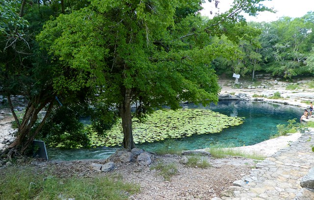 Dzibilchaltún Cenote