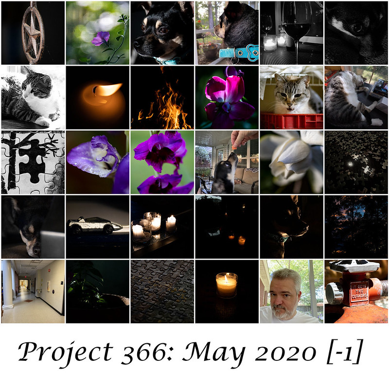 Project366 May