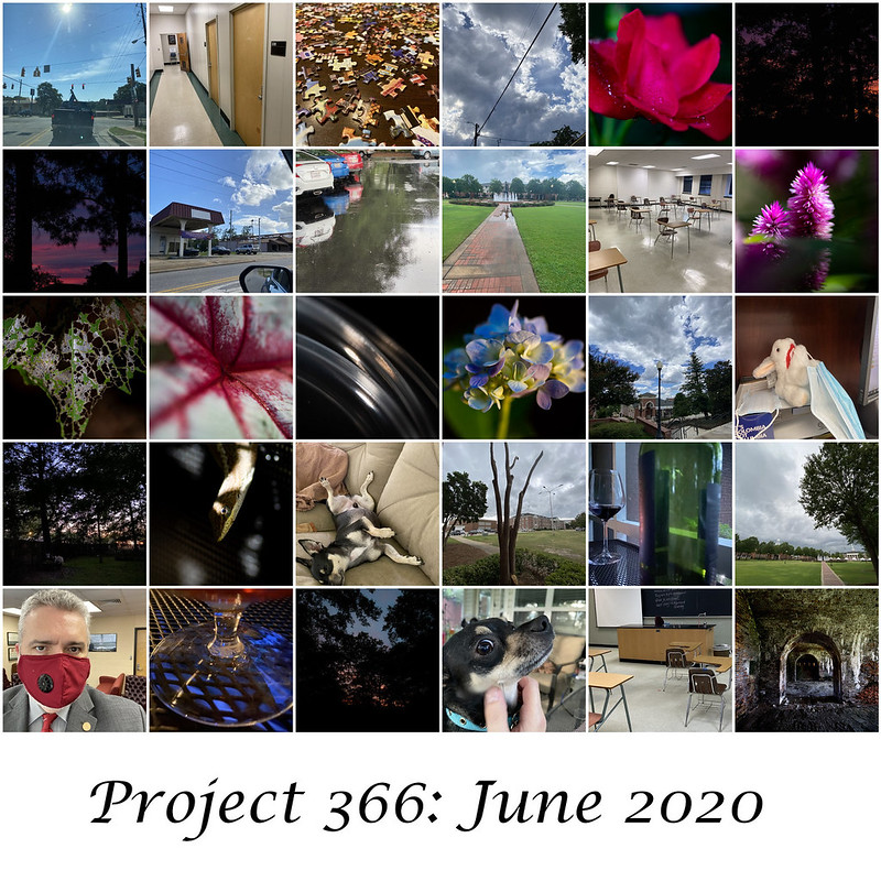 Project366 June