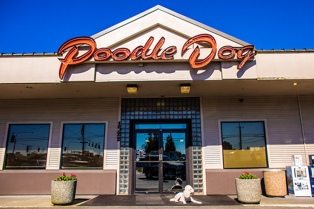 Margaux Likes to Eat at Poodle Dog