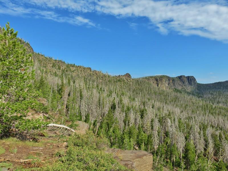 Gearhart Mountain