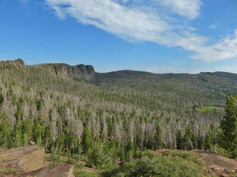 Gearhart Mountain Wilderness