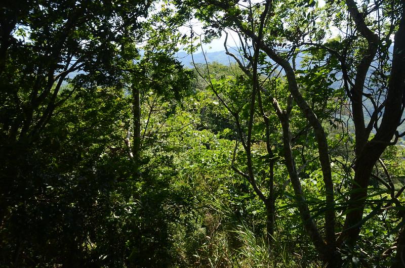 430岩峰俯瞰汶水山