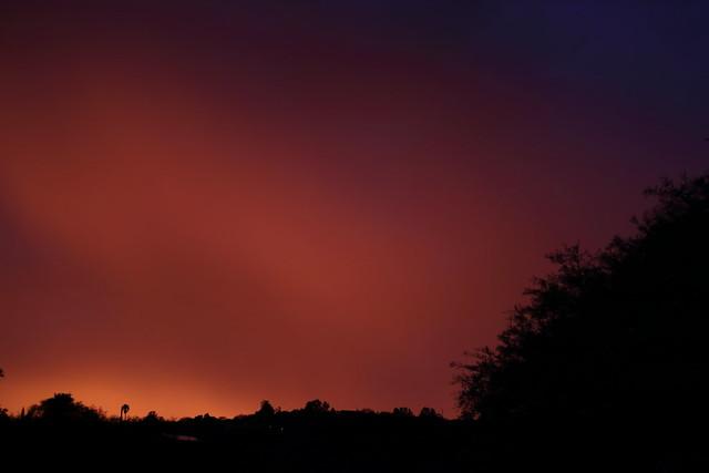 Sunset 7 21 20_8741