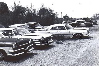 Winnie Hogg Dodge Auction 1984