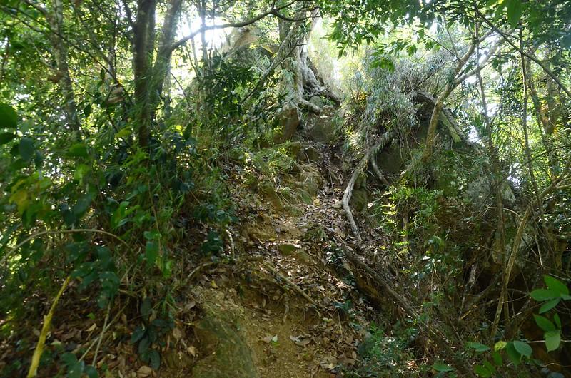 汶水山430岩峰 (1)