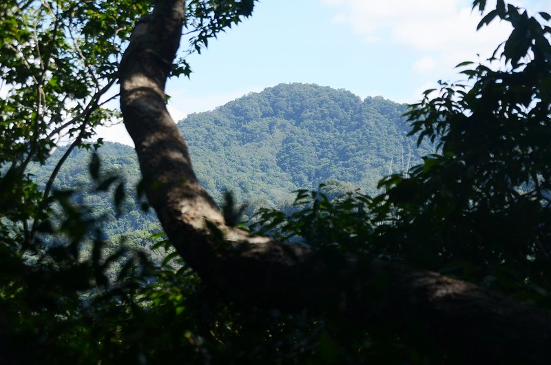 汶水山山頂北望八角崠山