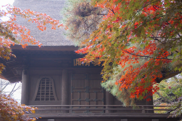 Heirinji Temple On A Foggy Autumn Day, Niiza