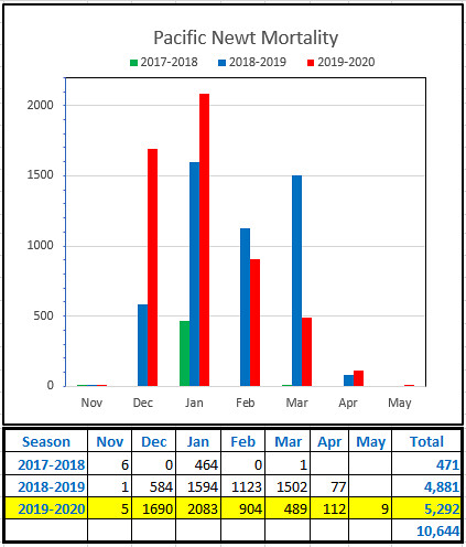 Year-by-Year-Chart(2)