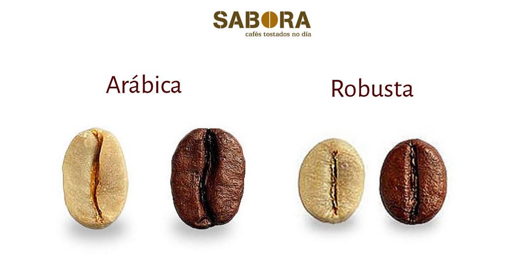 Café arábica y café robusta tostados en grano