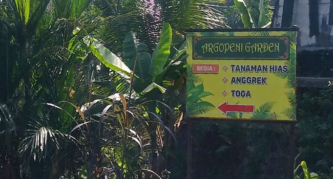 argopeni-garden-Karangpandan