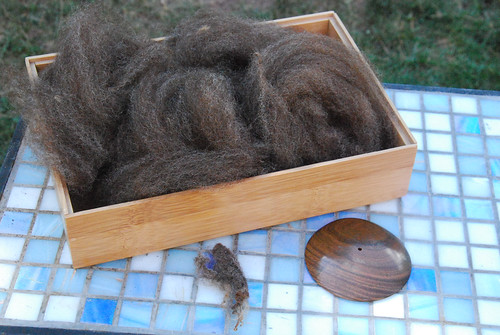 Combed brown Shetland wool top in bamboo box, wool lock and Tabachek diz on tiled side table