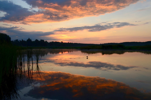 Early summer morning on the lake. Beautiful sunrise. Lebedin, Sumy region Ukraine.