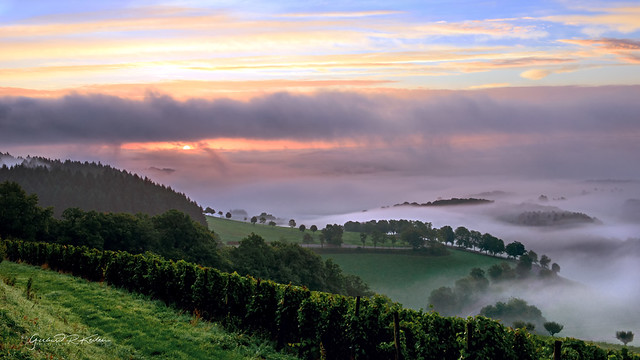 Misty morning over the Wittlich valley!