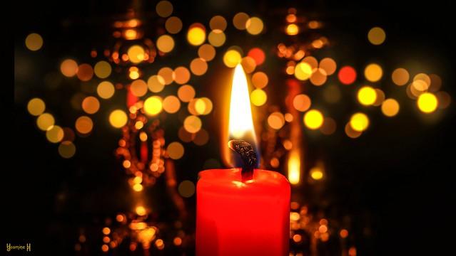 #Flame  #MacroMondays - 8684