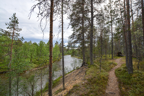 DSC_2992 | by adventurelandlapland